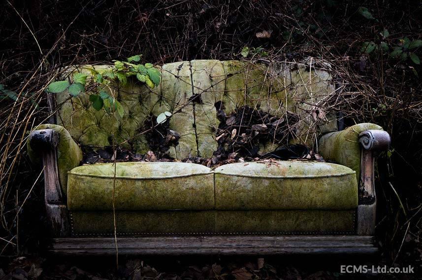 Old Rotten Sofa