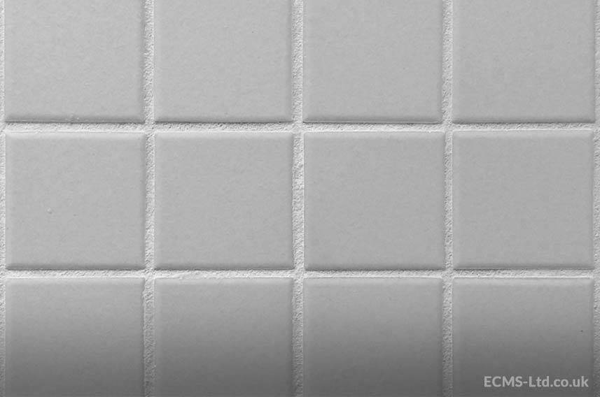 Freshly Grouted Tiles